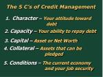 the 5 c s of credit management