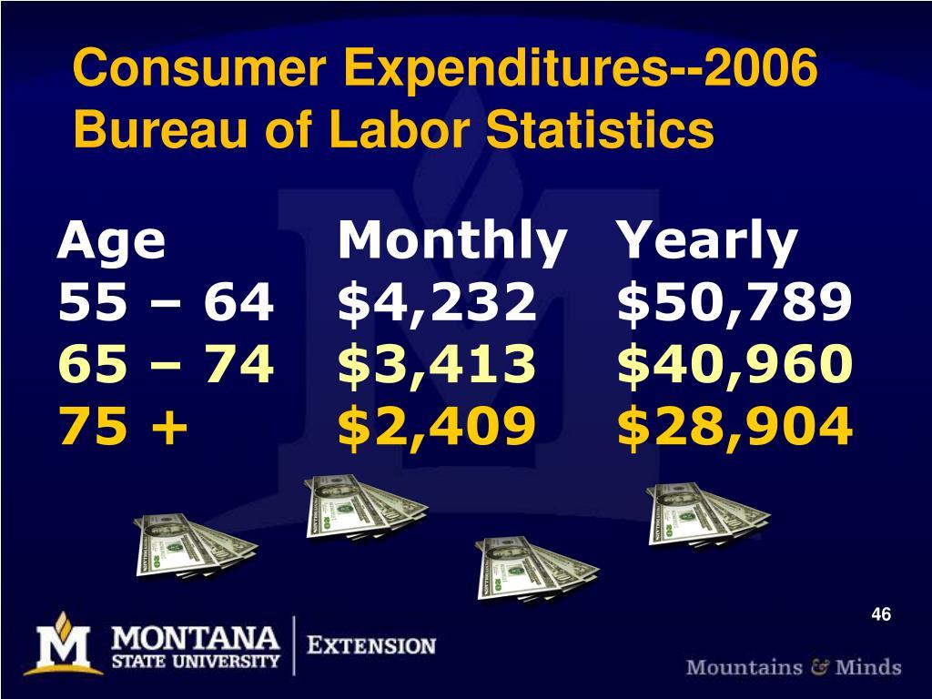 Consumer Expenditures--2006