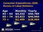 consumer expenditures 2006 bureau of labor statistics