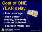 cost of one year delay
