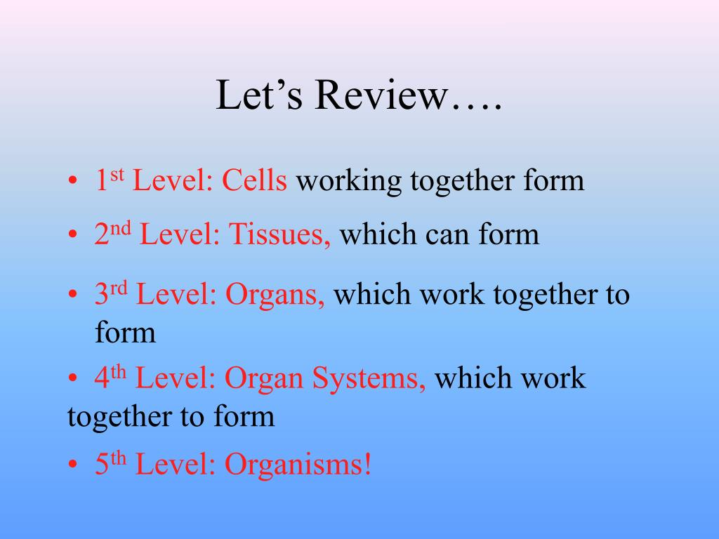 Let's Review….