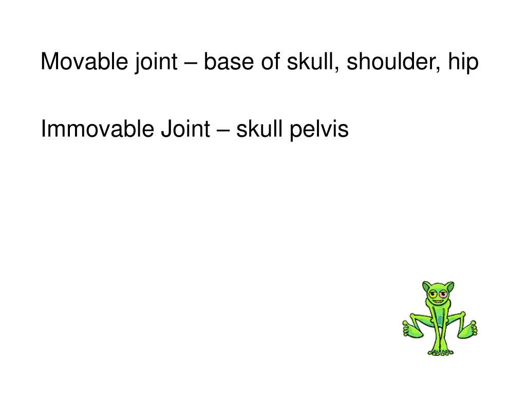 Movable joint – base of skull, shoulder, hip