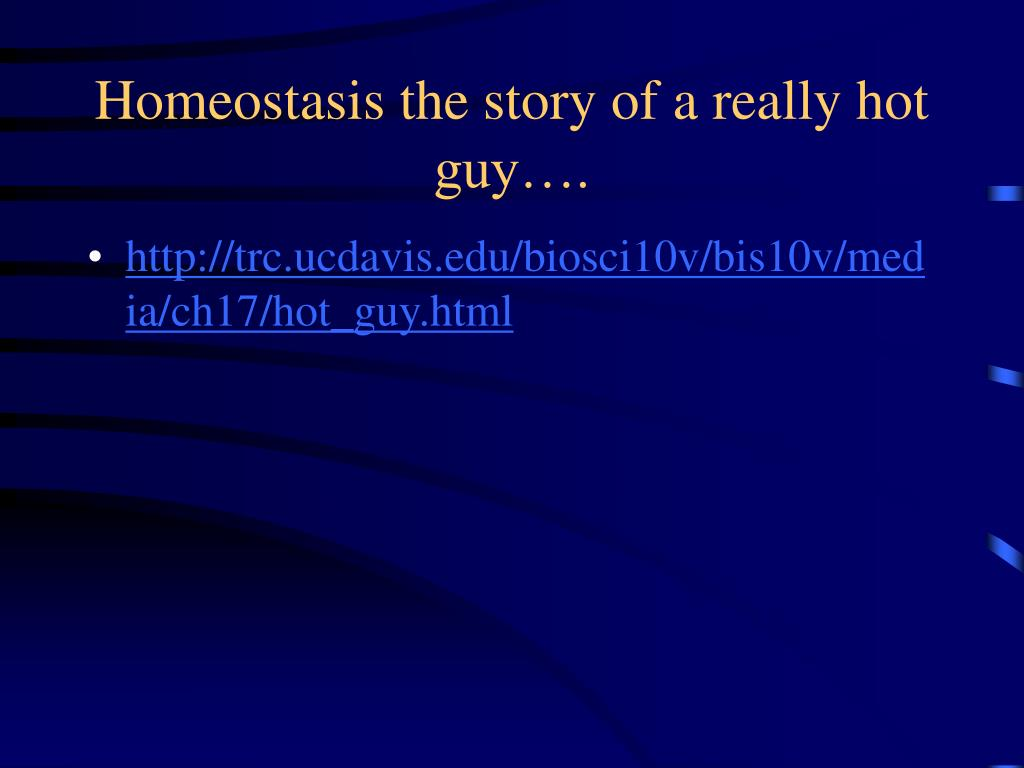 Homeostasis the story of a really hot guy….