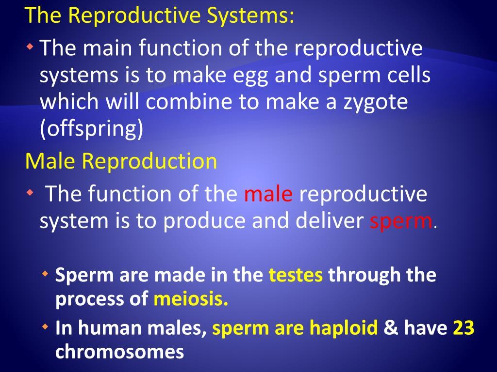 The Reproductive Systems: