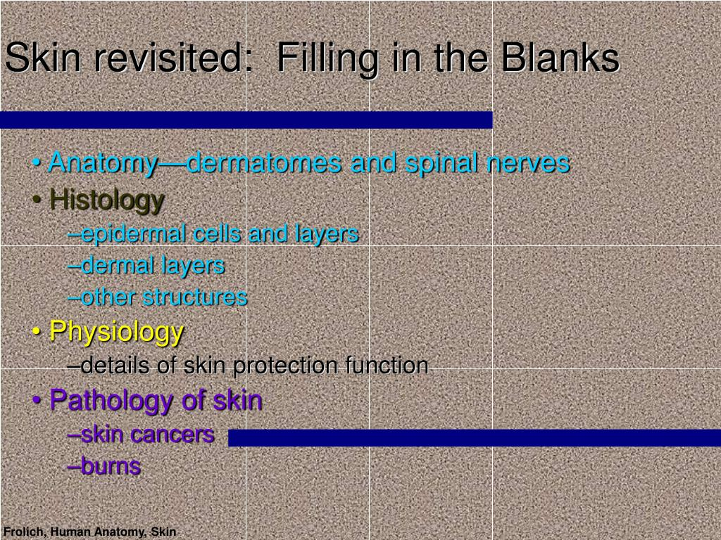 Skin revisited:  Filling in the Blanks