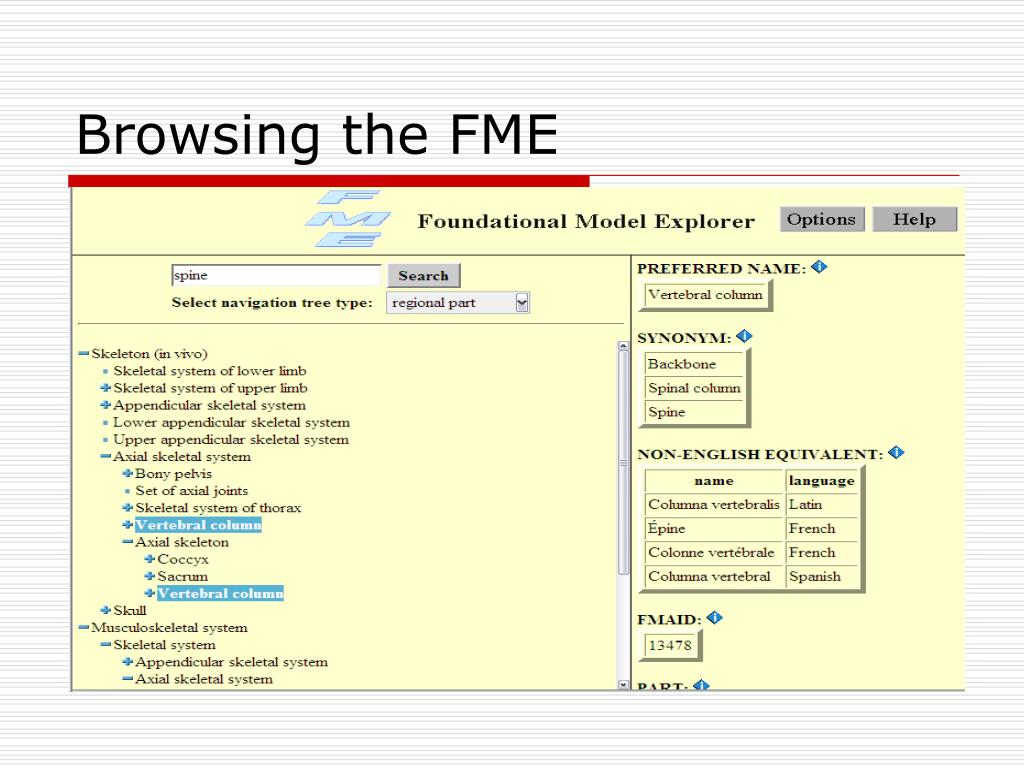 Browsing the FME