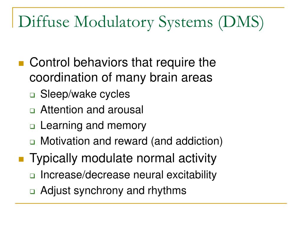 Diffuse Modulatory Systems (DMS)