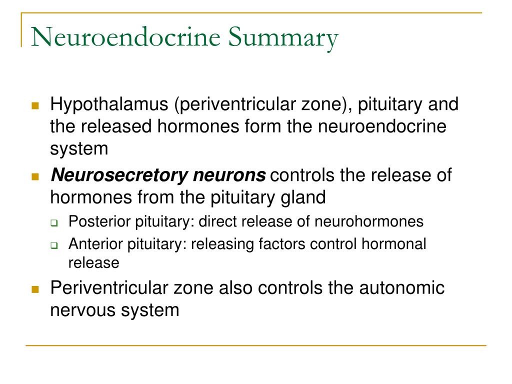 Neuroendocrine Summary
