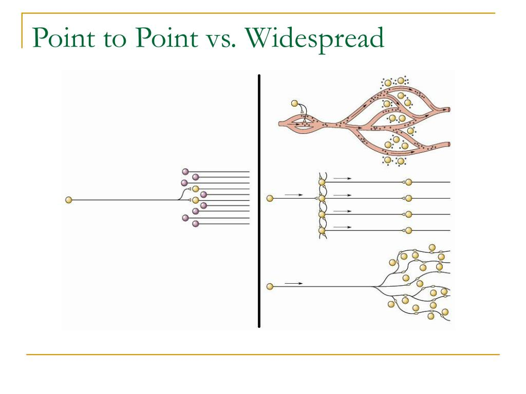 Point to Point vs. Widespread