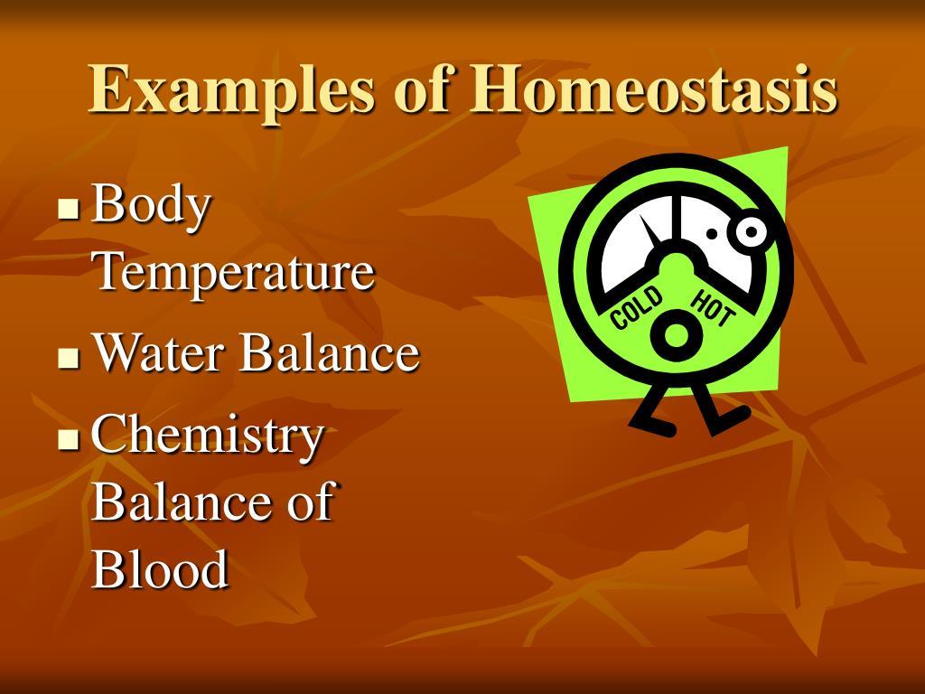 Examples of Homeostasis