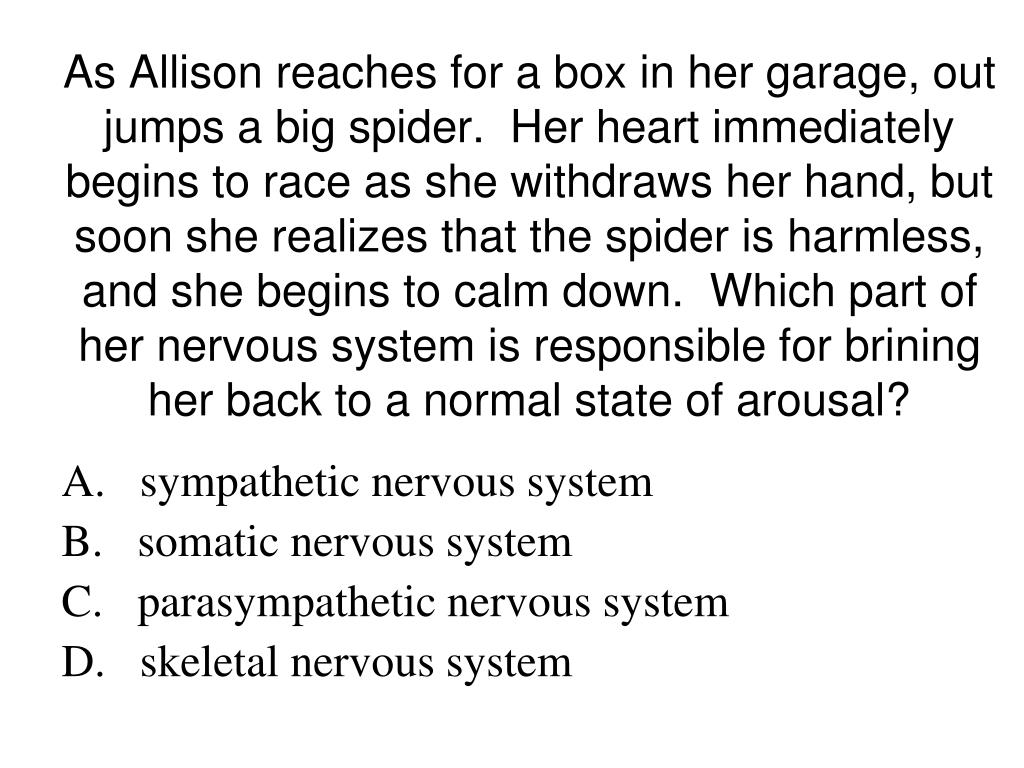 As Allison reaches for a box in her garage, out jumps a big spider.  Her heart immediately begins to race as she withdraws her hand, but soon she realizes that the spider is harmless, and she begins to calm down.  Which part of her nervous system is responsible for brining her back to a normal state of arousal?