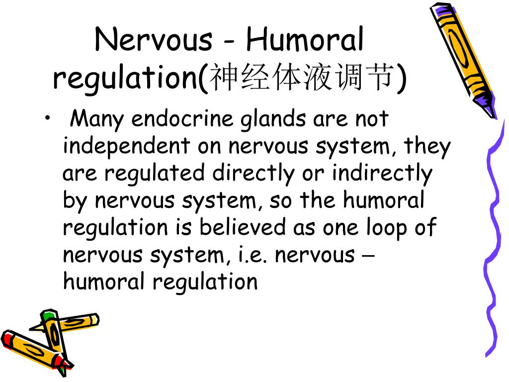 Nervous - Humoral regulation(