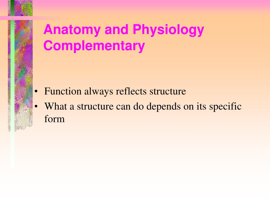Anatomy and Physiology Complementary