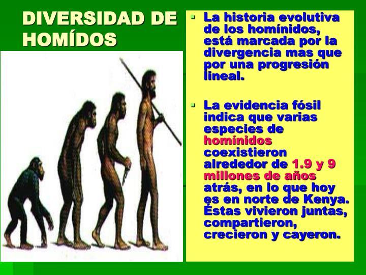 DIVERSIDAD DE HOMÍDOS