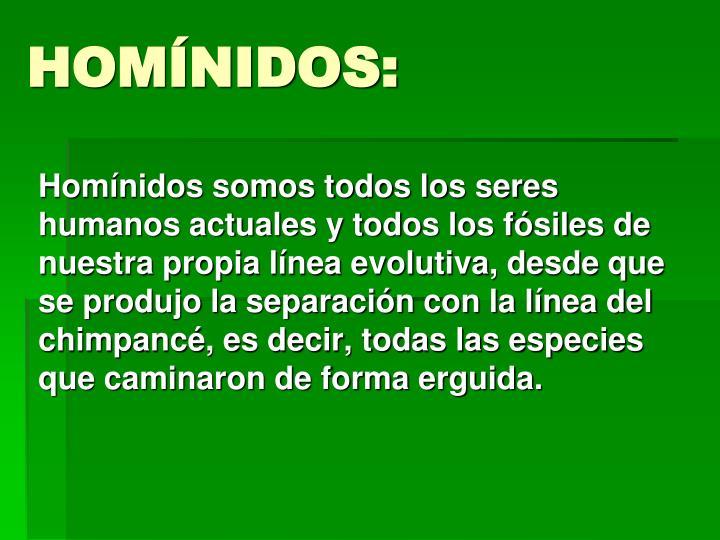 HOMÍNIDOS: