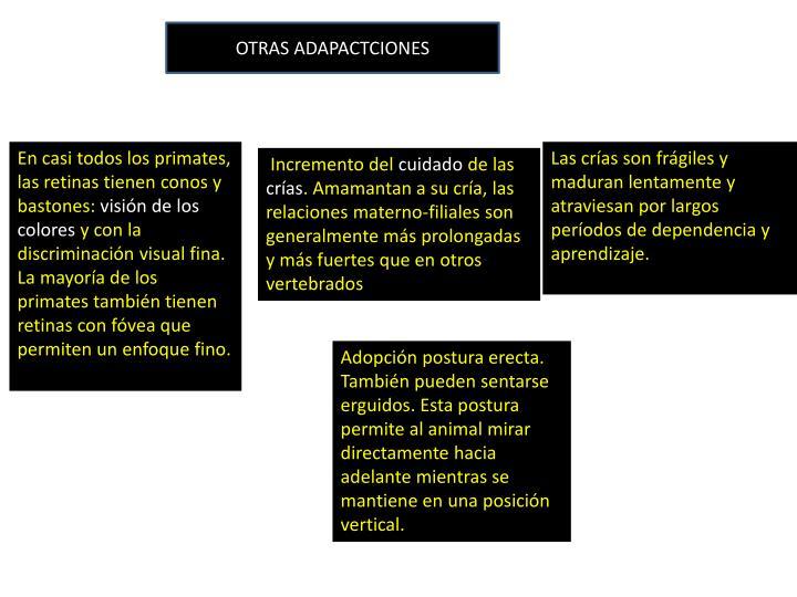OTRAS ADAPACTCIONES