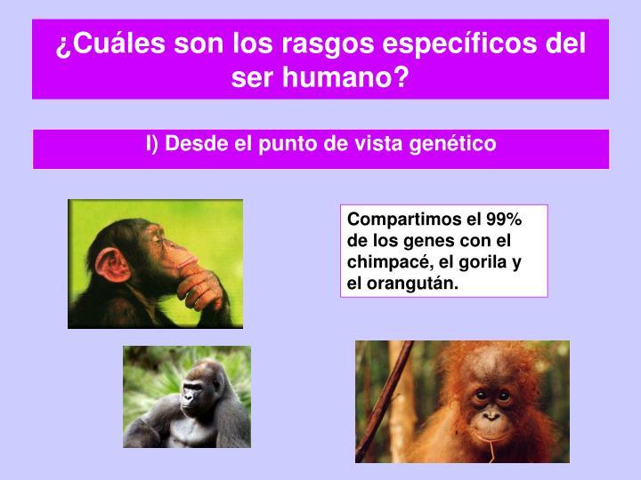 ¿Cuáles son los rasgos específicos del ser humano?