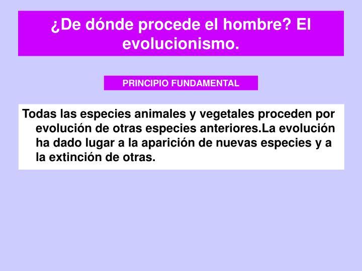 ¿De dónde procede el hombre? El evolucionismo.