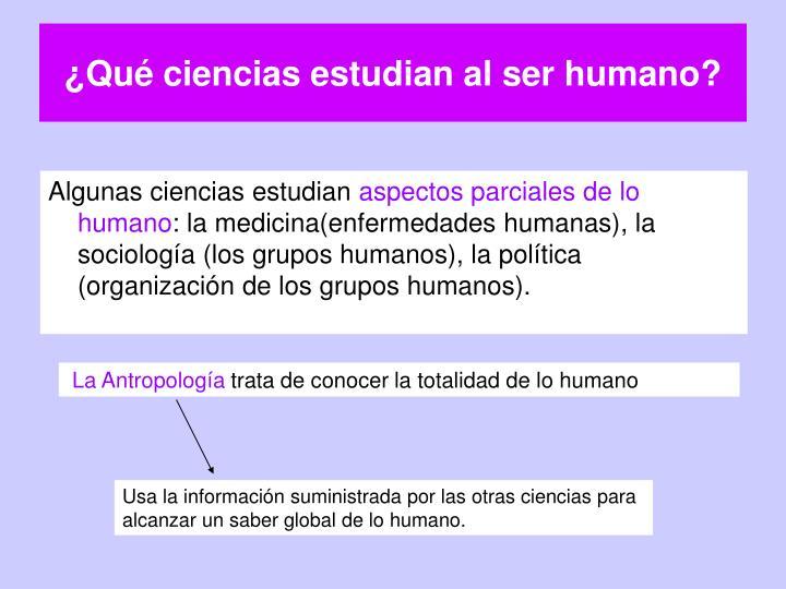 ¿Qué ciencias estudian al ser humano?