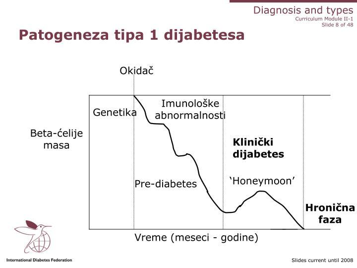 Patogeneza tipa 1 dijabetesa