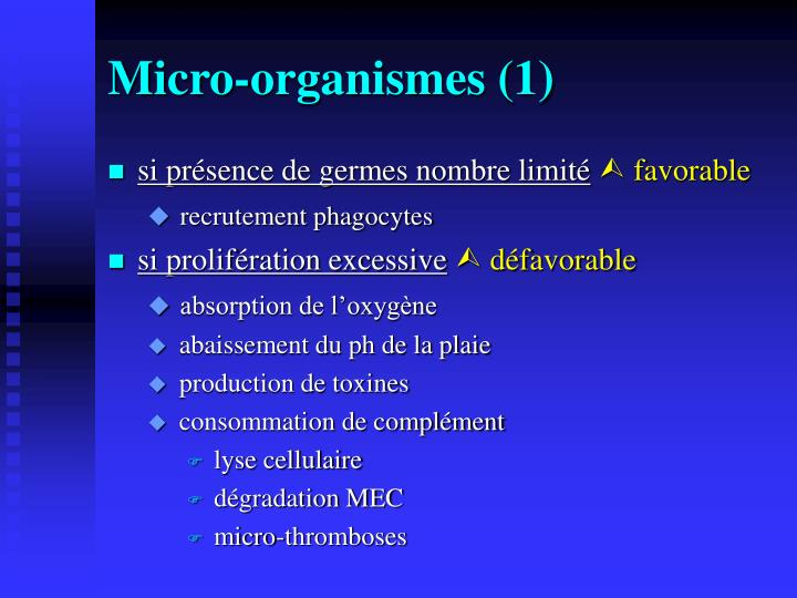Micro-organismes (1)