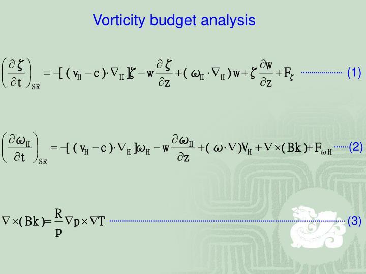 Vorticity budget analysis