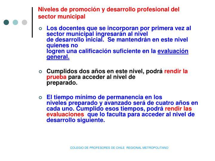Niveles de promoción y desarrollo profesional del