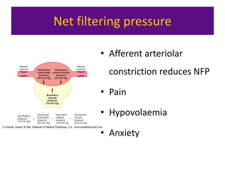 Net filtering pressure