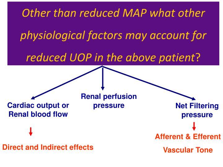 Renal perfusion pressure