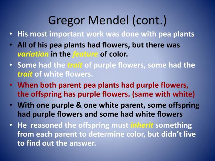 Gregor Mendel (cont.)