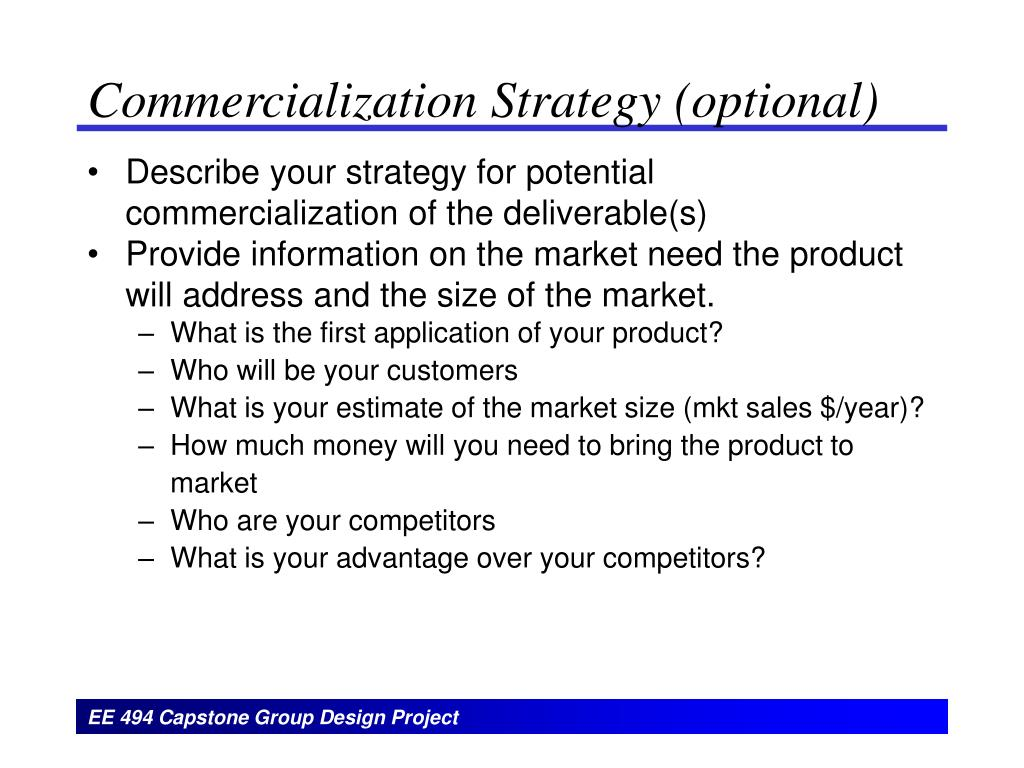 Commercialization Strategy (optional)