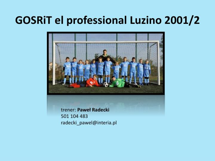 GOSRiT el professional Luzino 2001/2