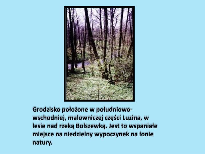 Grodzisko położone w południowo-wschodniej, malowniczej części Luzina, w lesie nad rzeką Bolszewką. Jest to wspaniałe miejsce na niedzielny wypoczynek na łonie natury.