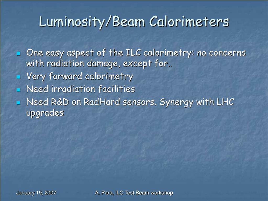Luminosity/Beam Calorimeters