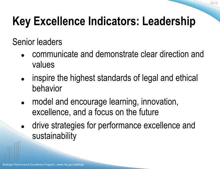 Key excellence indicators leadership