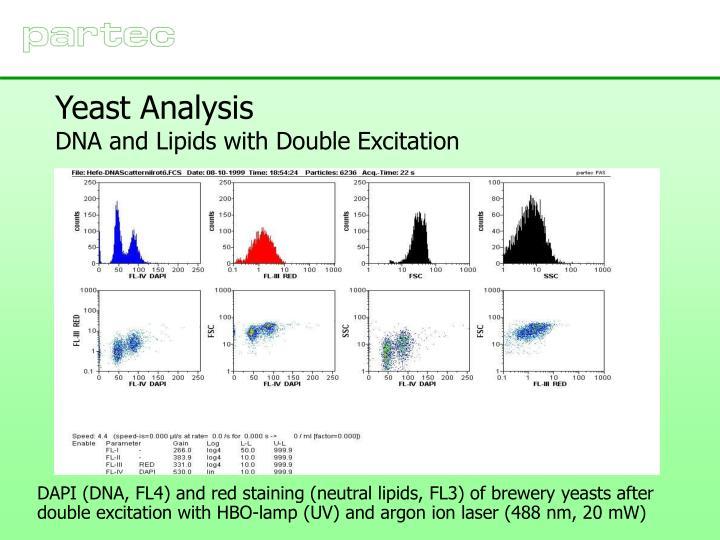 Yeast Analysis
