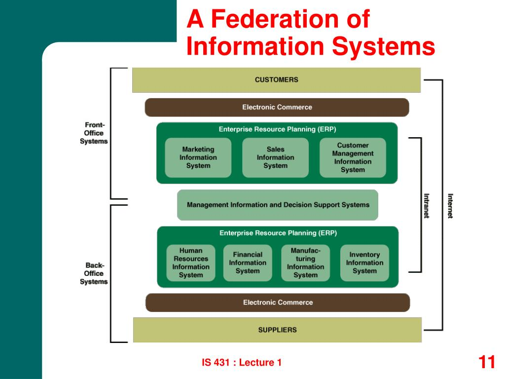 A Federation of Information Systems