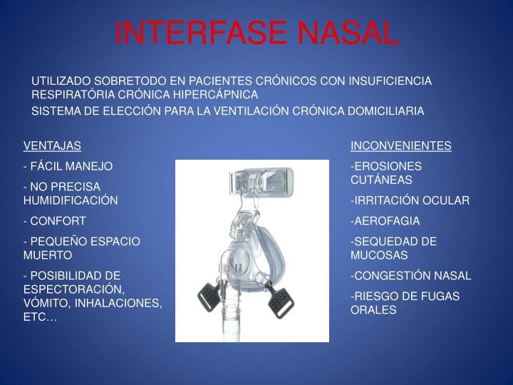 INTERFASE NASAL