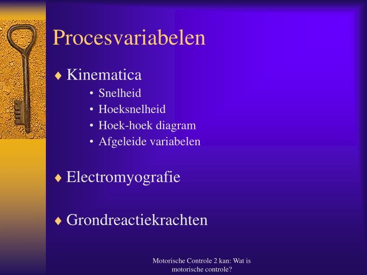Procesvariabelen