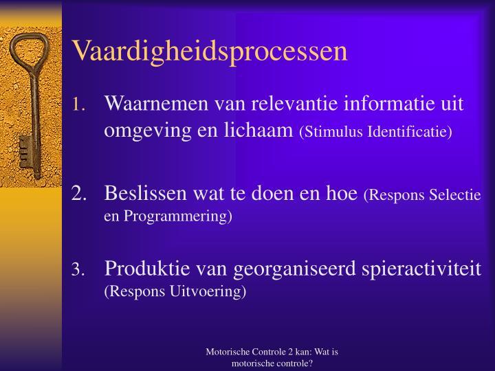 Vaardigheidsprocessen