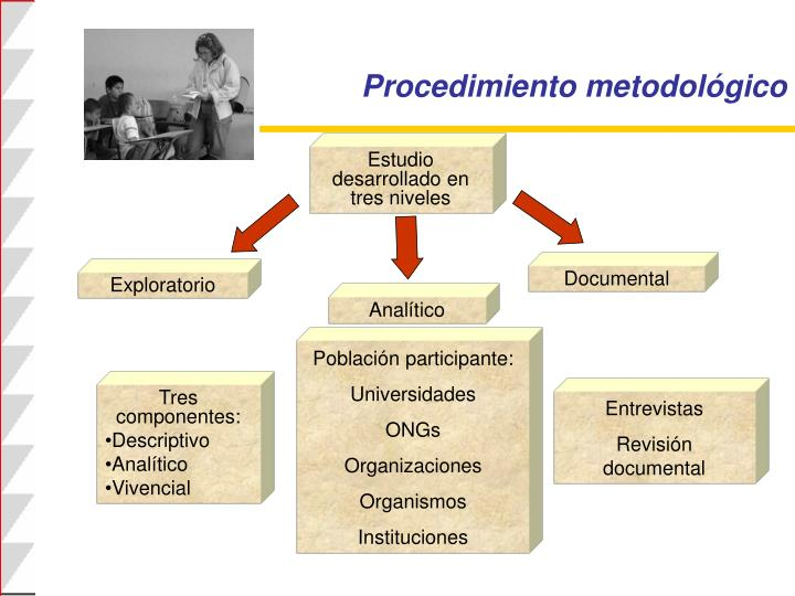 Procedimiento metodológico