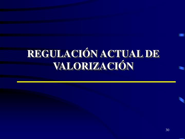 REGULACIÓN ACTUAL DE VALORIZACIÓN