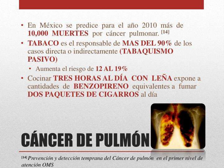 En  México  se  predice  para  el  año  2010  más  de