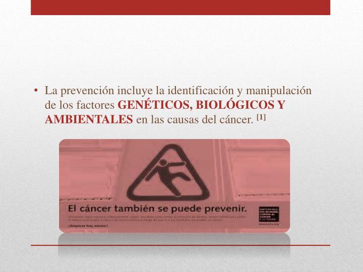 La prevención incluye la identificación y manipulación de los factores