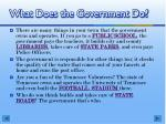 what does the government do