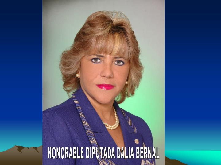 HONORABLE DIPUTADA DALIA BERNAL