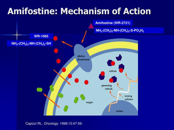 Amifostine: Mechanism of Action
