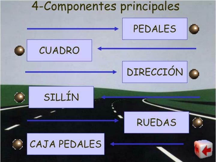 4-Componentes principales