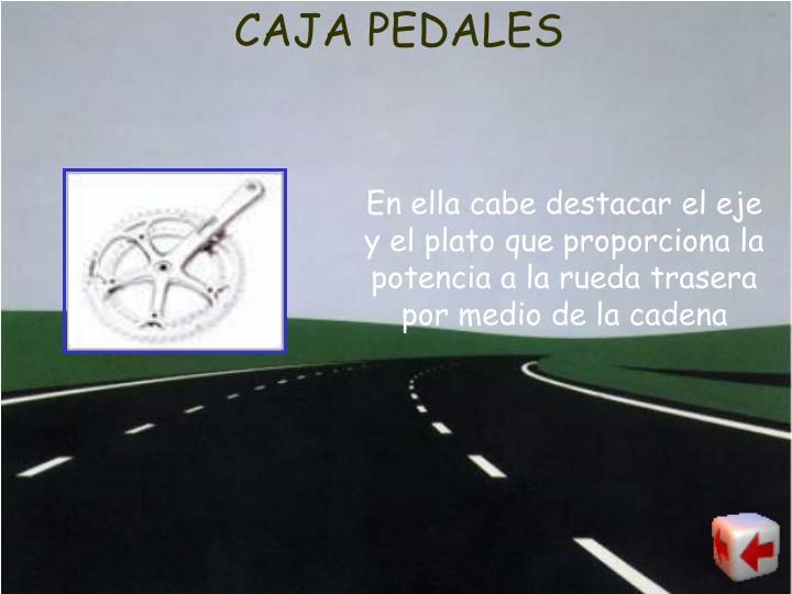 CAJA PEDALES