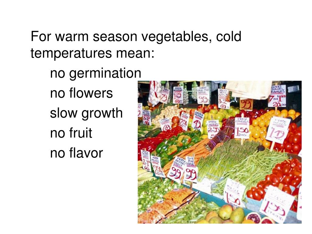 For warm season vegetables, cold temperatures mean: